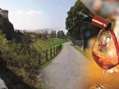 strade del vino in lombardia