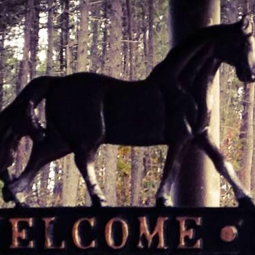 Centro Equestre Framura