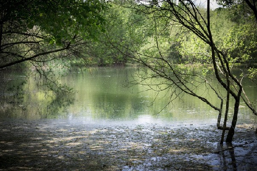Le Domaine des Planches  Un gite dans le Cantal en Auvergne  Bienvenue