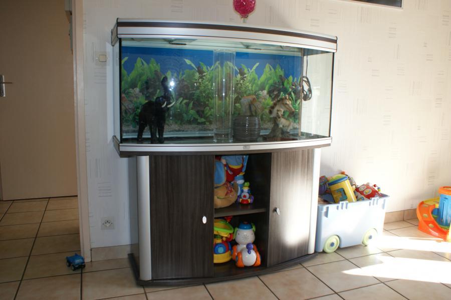 Troc Echange Aquarium Meuble Sur