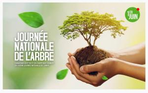 Journée nationale de l'arbre au Togo