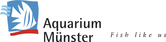 Aquarium Munster banner for AFC