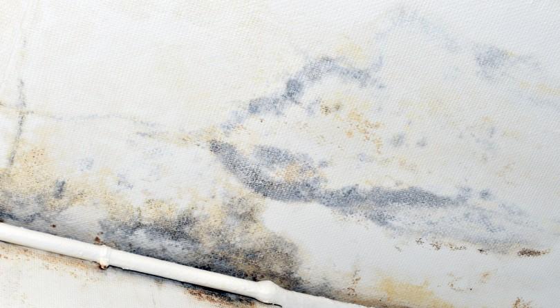 Aureole Jaune Plafond  Ides dimages  la maison