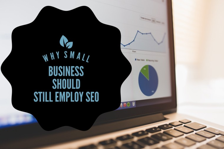 small business seo case studies