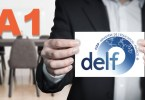 DELF A1 présentation du niveau