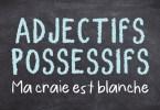 Adjectifs possessifs