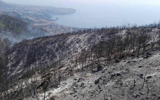 Praia a Mare, incendio al Saracinello: il video esclusivo che svela un episodio inquietante