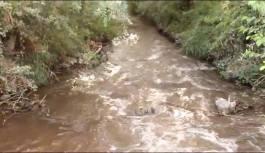 [VIDEO] Scarichi abusivi, a Santa Maria del Cedro il fiume Abatemarco diventa marrone