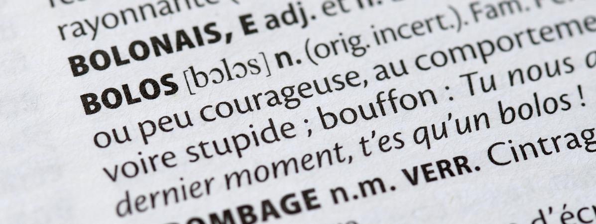 Zadiste, troll, émoticône... Découvrez les nouveaux mots