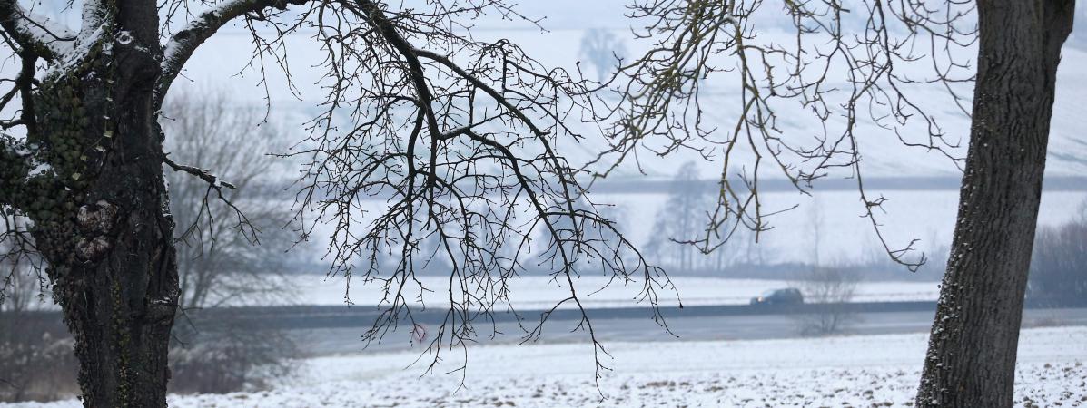 Le Bas-Rhin est touché par la neige et le verglas, le 8 janvier 2017.
