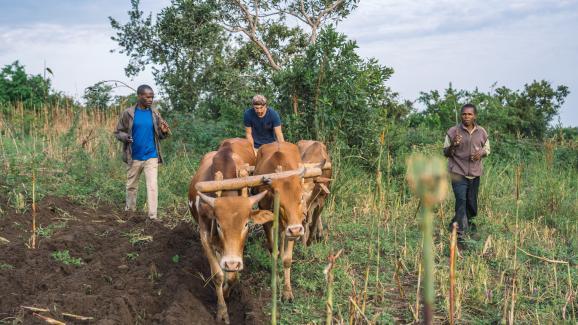 El pueblo de Nyamburi, Tanzania. Los pueblos seleccionados están fuera de los circuitos turísticos clásicos.
