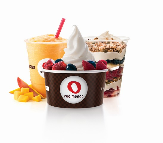 Top Frozen Yogurt Franchises   Franchise Chatter