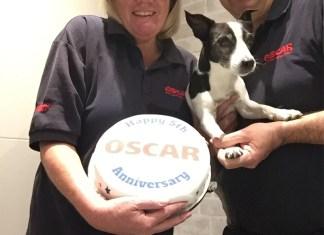 oscar 5th Anniversary