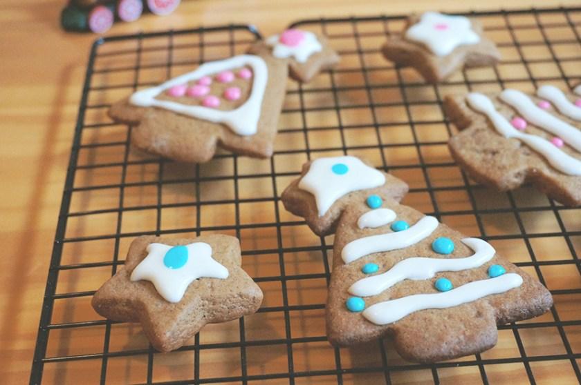 biscoito-gegibre-gingerbread-5