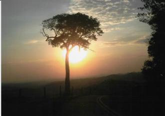 Amador - Belezas Naturais: 1º Lugar Paula de Souza Bauke
