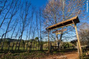 Caminhada terá diferentes trilhas no trajeto e termina com almoço e atividades no Recanto do Dário, na linha São João