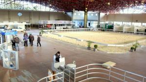 A pista de julgamento e estandes estão sendo finalizados no centro de eventos para receber a Via Tecnológica do Leite