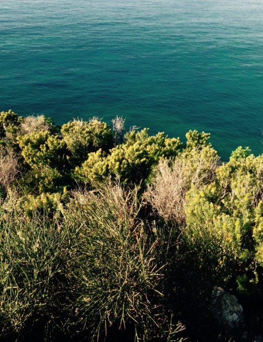 VERTICAL SEA CONTRASTS