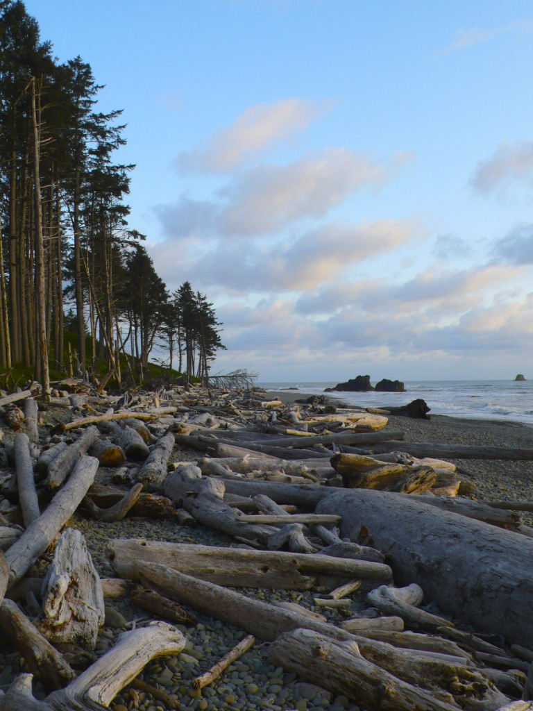 True Beauty: Ruby Beach arrived just at sunset