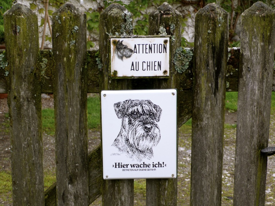 """And last but not least, a dog posting. The lower sign translates to, """"I watch over this house.""""  I love that it is a sketch of the actual dog who lives here."""