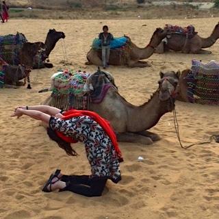 Camel Love