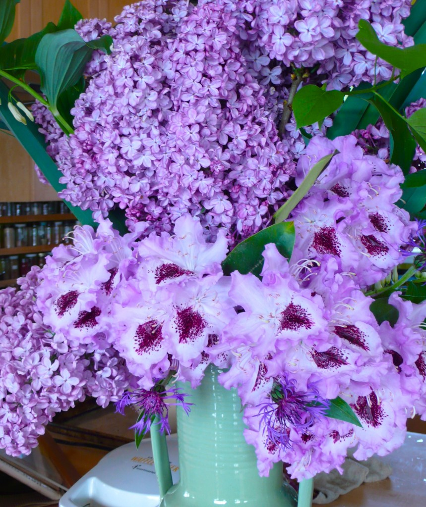 """What can I bring?"" ""Flowers."" Sometimes you get what you ask for!  Lilacs, rhododendron, Solomon's Seal in a vase!"