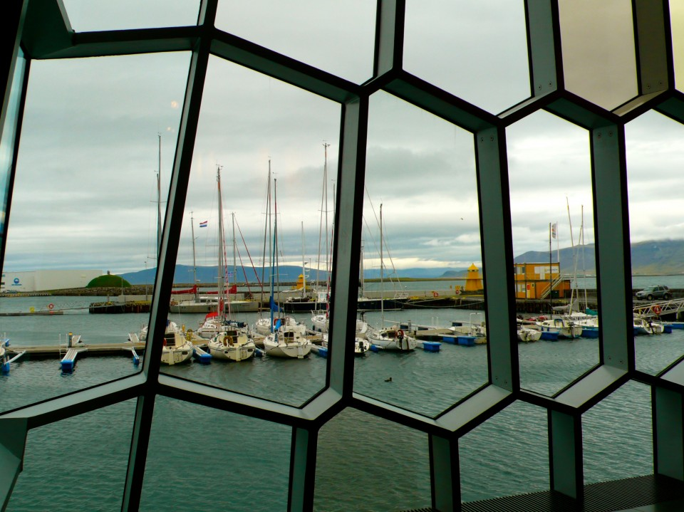 View of the harbor outside the glass frames