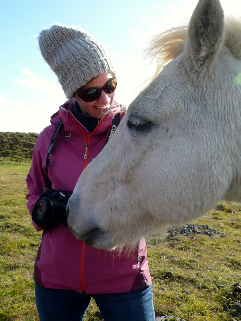 Betsy soaks up good energy from another gentle Icelandic horse