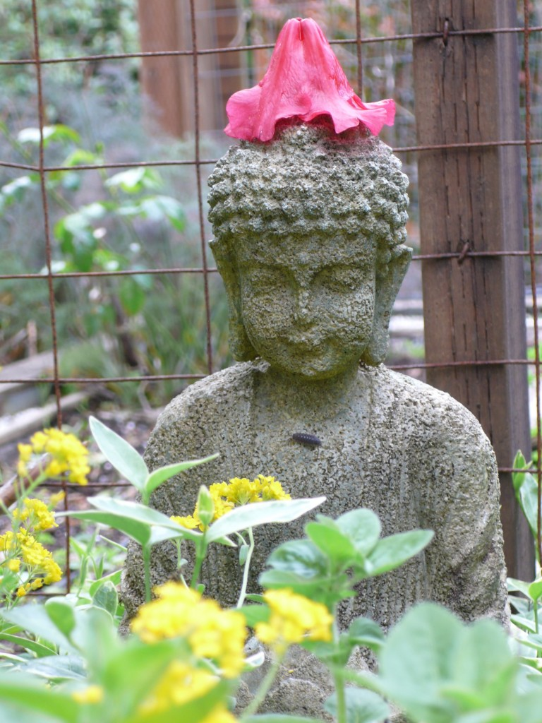 Serene, he did not seem to mind his flower hat at all.