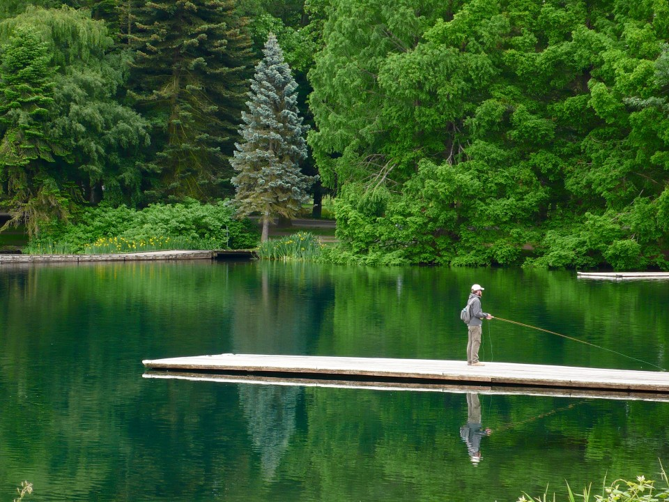 With the light different every single day, who can ever tire of walking around Green Lake?