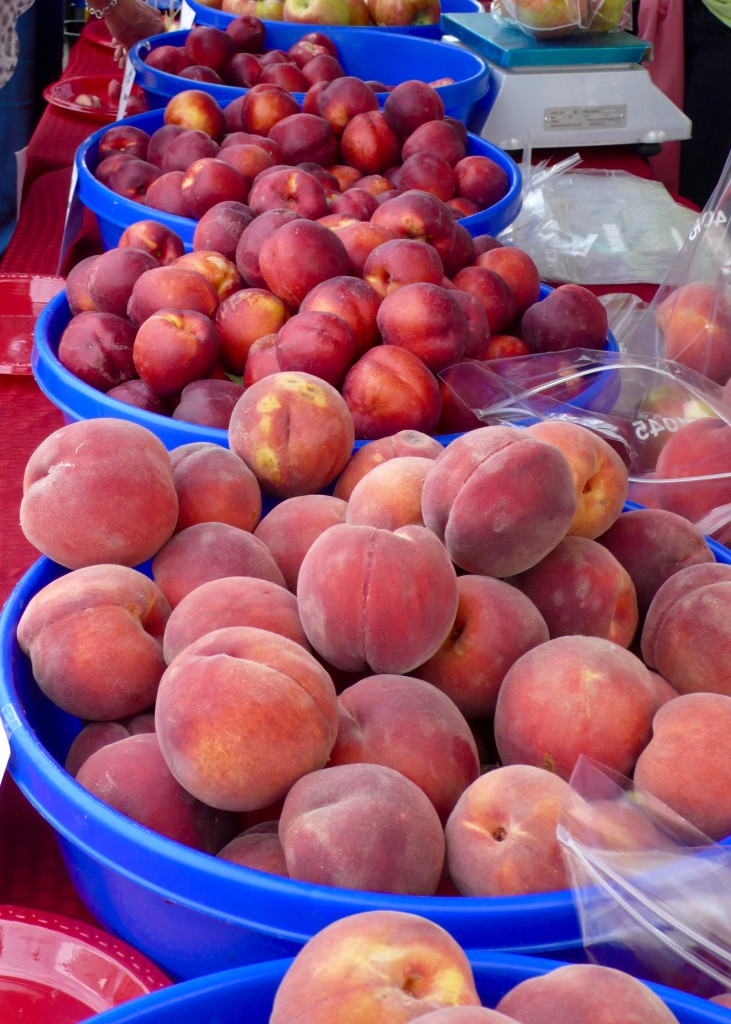 FRUIT: gifts of summer!  Roslyn farmers' market