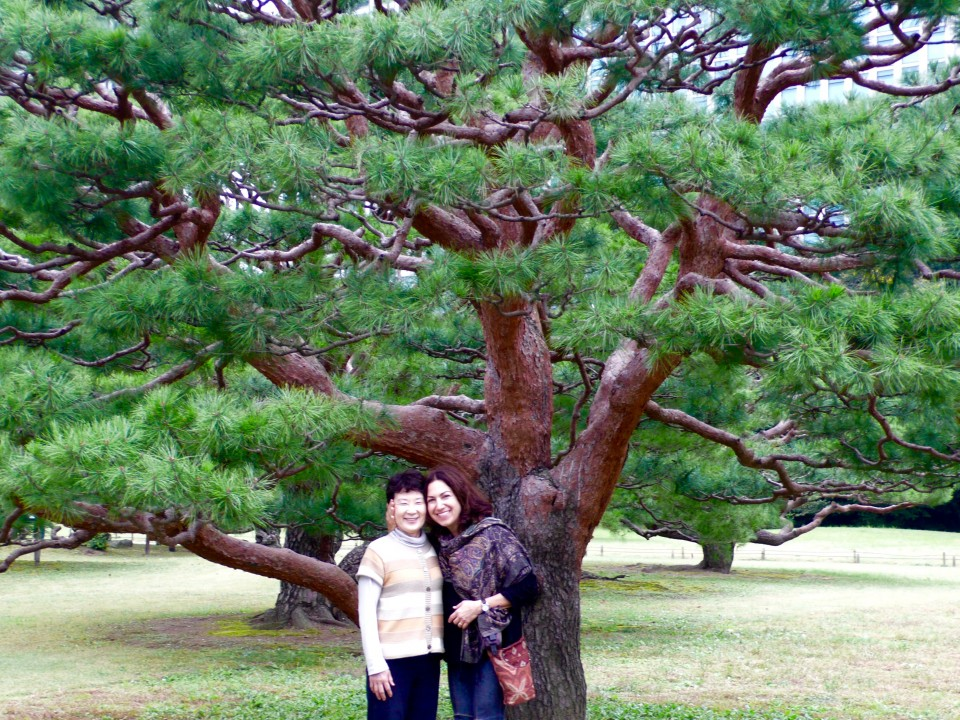 Kazuko and me in front of one of the many ancient pine trees.