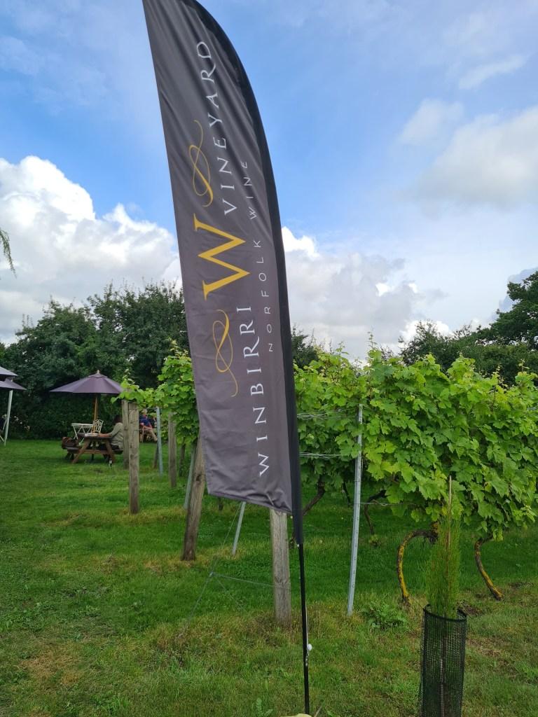 Wine Garden in Winbirri Vineyard