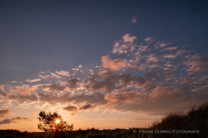 Sonnenstern, Ameland, NL