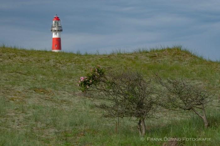 Leuchtturm, Ameland, NL
