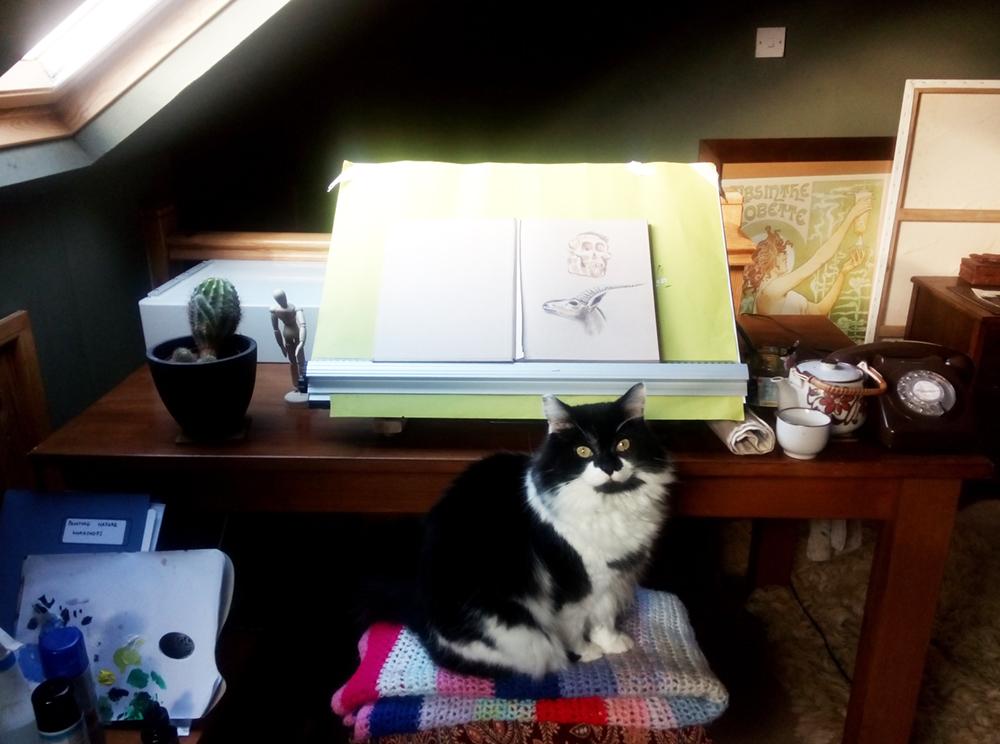 graphic designer & illustrator in Cardiff - my studio with cat