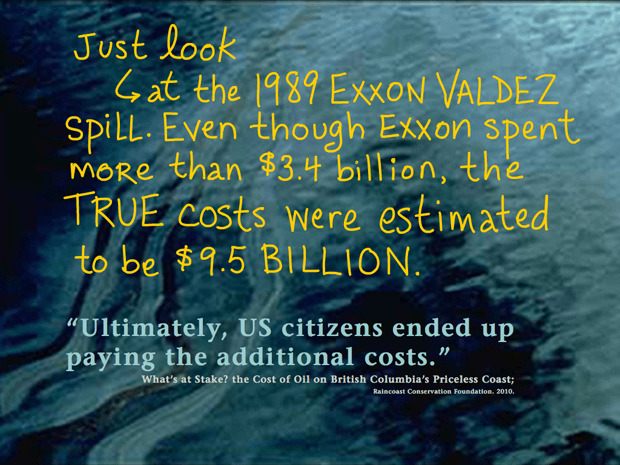 One big spill could wipe out B.C.'s entire tax revenue of $1.2 billion -- which is forecast over 30 years; writing by Franke James; Dogwood Initiative 'No Tankers Loonie Decal'; Photo 'Ultimately, US citizens ended up paying the additional costs.' source: What's at Stake? the Cost of Oil on British Columbia's Priceless Coast; Raincoast Conservation Foundation. 2010.