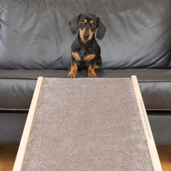 How Can I Stop My Dog Jumping On The Sofa Sloane Rose Hip Vital Canine Frankie Lil Sausage