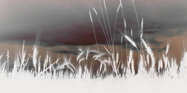 Vicinity - Abstract Nature Art Franklin Arts