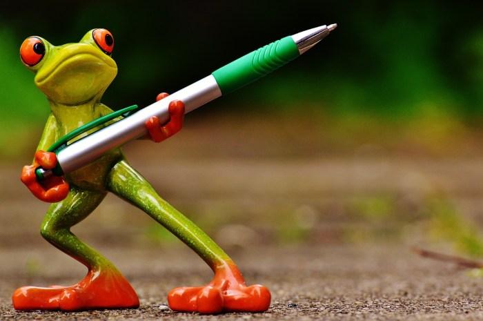 frog writer