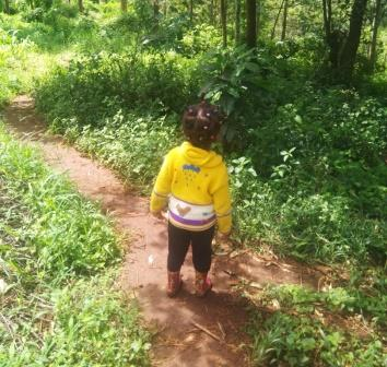 toddling in the bush