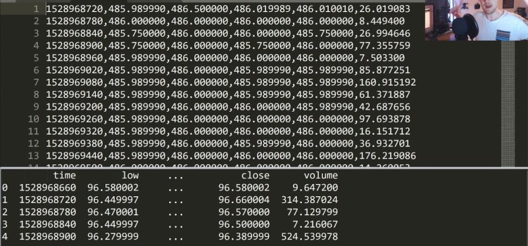 Predicting Cryptocurrency Values with an RNN