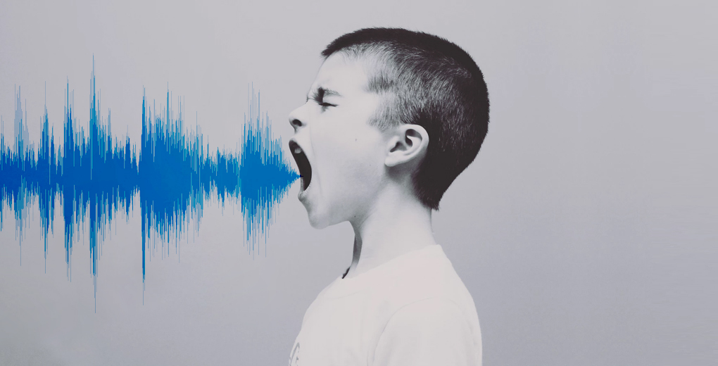 Learn how to Build your own Speech-to-Text Model (using Python)