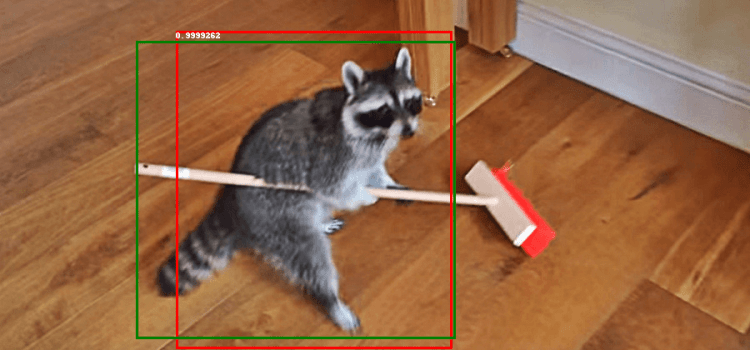 Building Your Own Object Detector — PyTorch vs TensorFlow