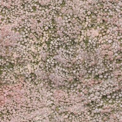 Spongy stone