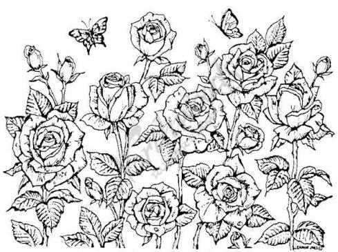 Northwoods Rubber Stamp Garden of Roses Background