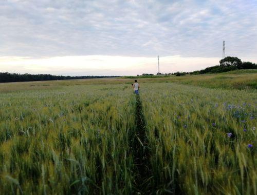 Unsere Reise nach Schlesien