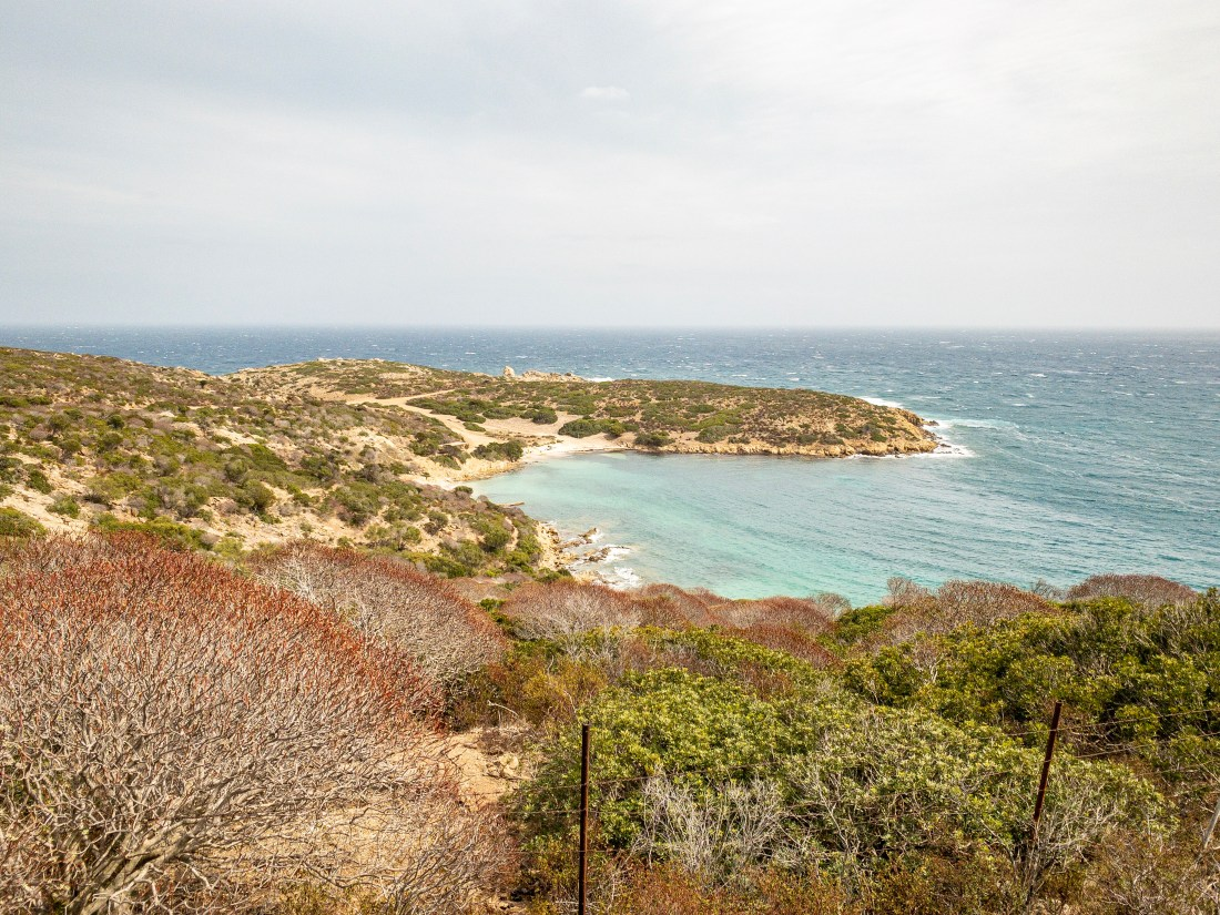 Asinara 22-09-2019