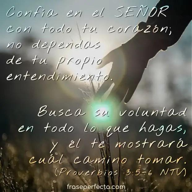 Como yo os he amado, que también os améis unos a otros. juan 13:34. 150 Frases Motivadoras De Dios Y De La Biblia Te Fortaleceran