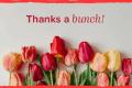 Tarjetas de agradecimiento gratis